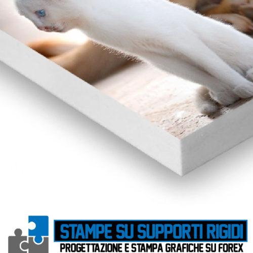 Progettazione Grafica e Stampa FOREX Cagliari Sardegna
